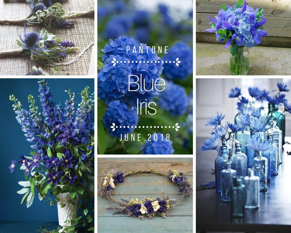 color-inspiration-blu-iris-fiori