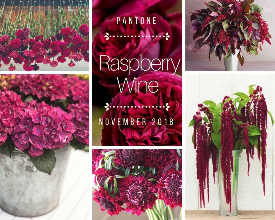 color-inspiration-raspberry-wine-fiori