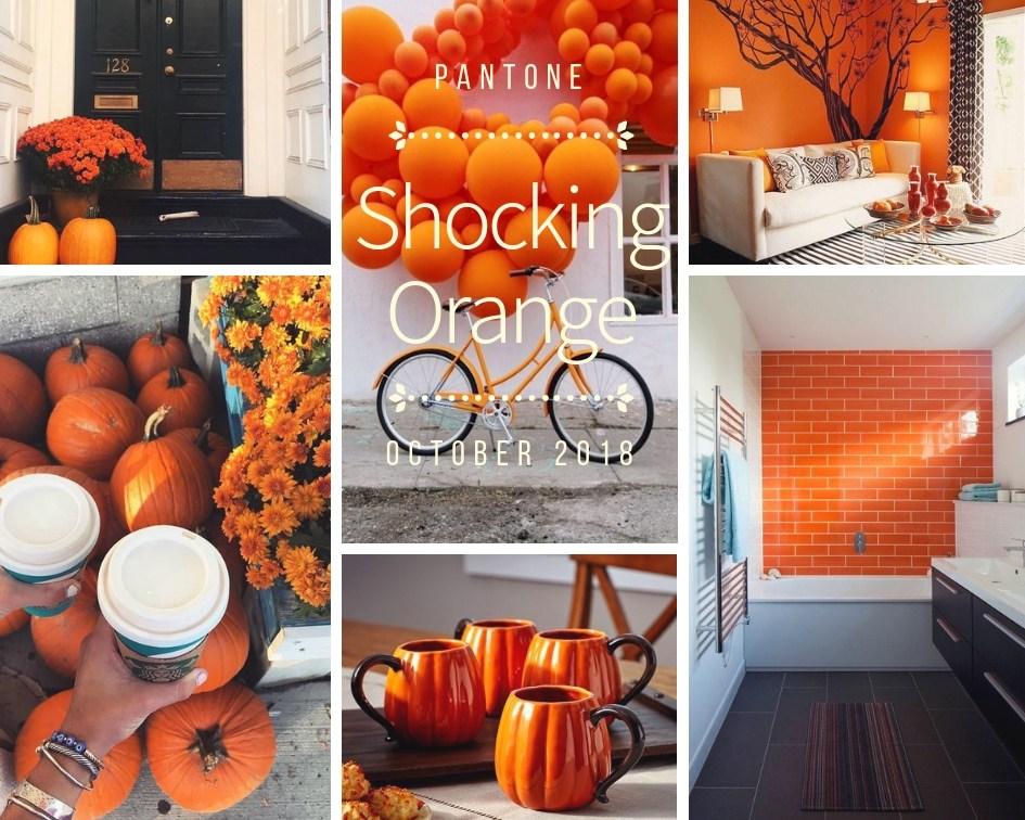 color-inspiration-shocking-orange-accessori