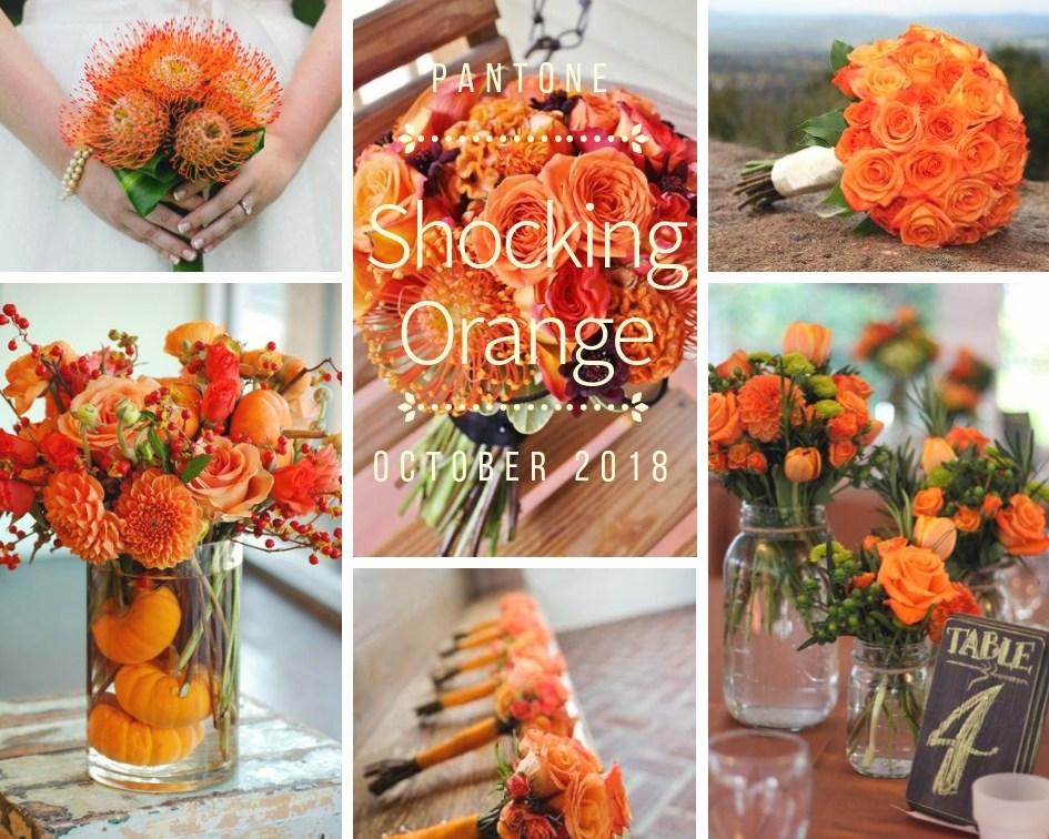 color-inspiration-shocking-orange-fiori