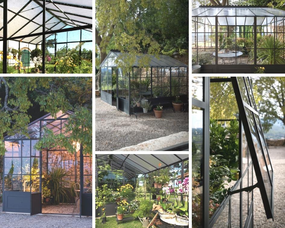 Flowerista - Unopiù Serra Orangerie - piante verdi