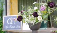 Evento Flowerista 4 maggio