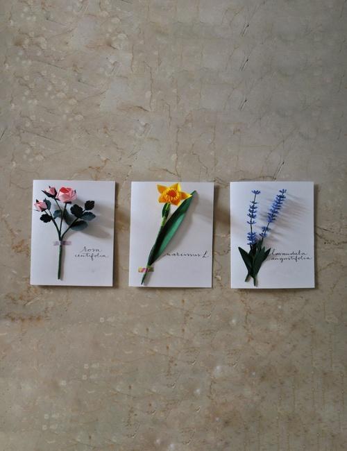 biglietto botanico fiorigami flowerista