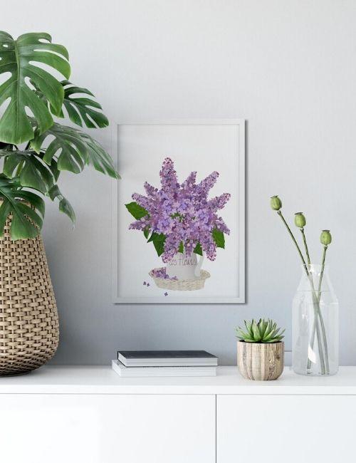 lilla-pourquoi pas lab-flowerista