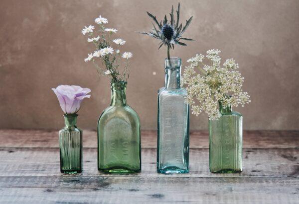 creare una community online-flowerista