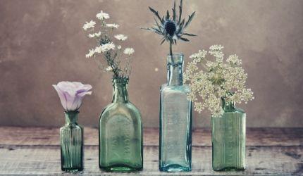 evidenza-creare una community online-flowerista
