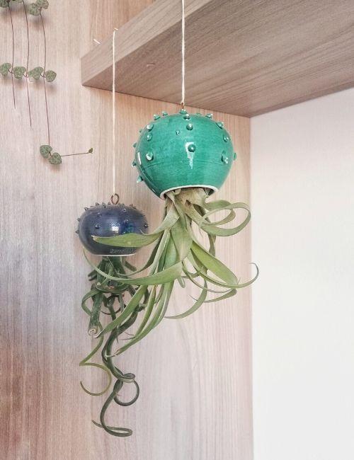 cactopus vaso-karios lab-boutique flowerista