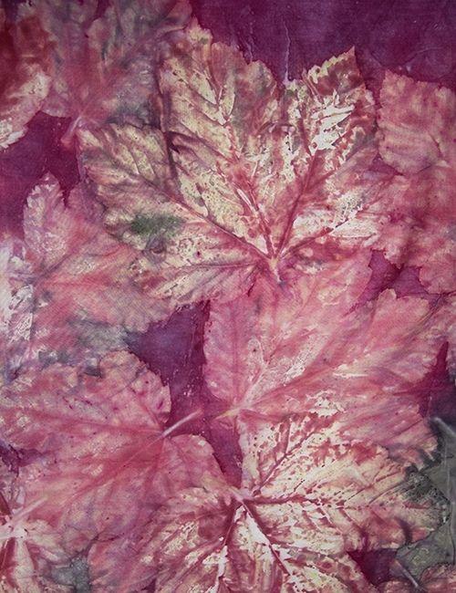 impronte vegetali vite_phillacolor_boutiqueflowerista