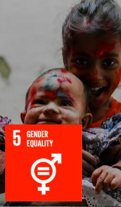 Sustainable Development Goals 5
