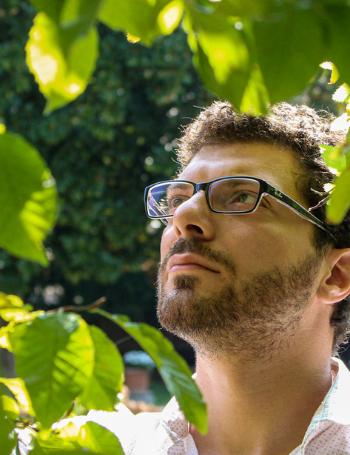 Francesco fedelfio Greenffink